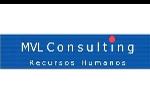 MVL Consulting SRL