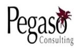 Pegaso Consulting, C.A.