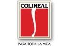 COLINEAL  CORPORACION