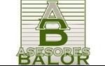 Asesores Balor C.A.