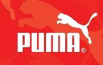 Puma de Venezuela