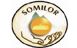 SOCIEDAD MINERA LIGA DE ORO S.A. SOMILOR