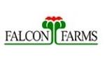Falconfarms de Ecuador S.A.