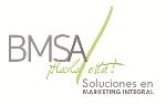 BMSA SERVICES
