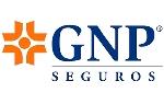 GNP Adelanta Asociados