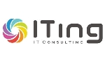 ITing IT Consulting