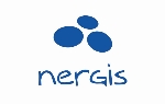 Nergis Business Consulting