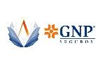 GNP - AMEPPRIS