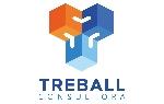 CONSULTORA TREBALL S.A.C.