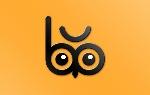 Bubo Branding