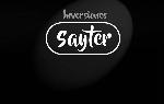 INVERSIONES SAYTER, C.A