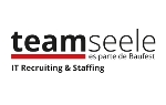 TeamSeele | IT Staffing & Recruiting