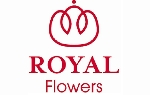 ROYAL FLOWERS S.A